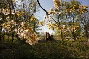 Floriade 2022, Almere, Groene Stad Arboretum, Bomenwacht Nederland