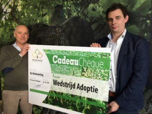 Adoptiewedstrijd, Plataan, Westersingel, Rotterdam