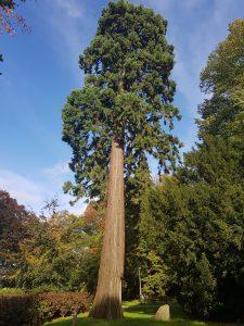 Doetinchem, arboretum