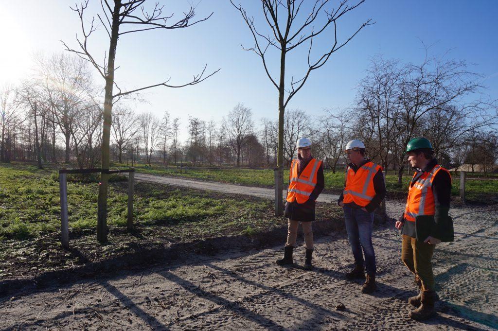 Floriade, Bomenwacht Nederland, Groene Stad Arboretum, Almere